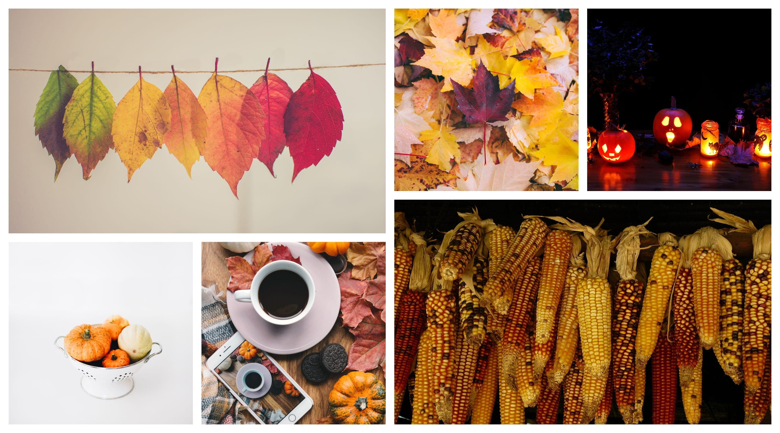 How to Spice Up Your Home for Fall
